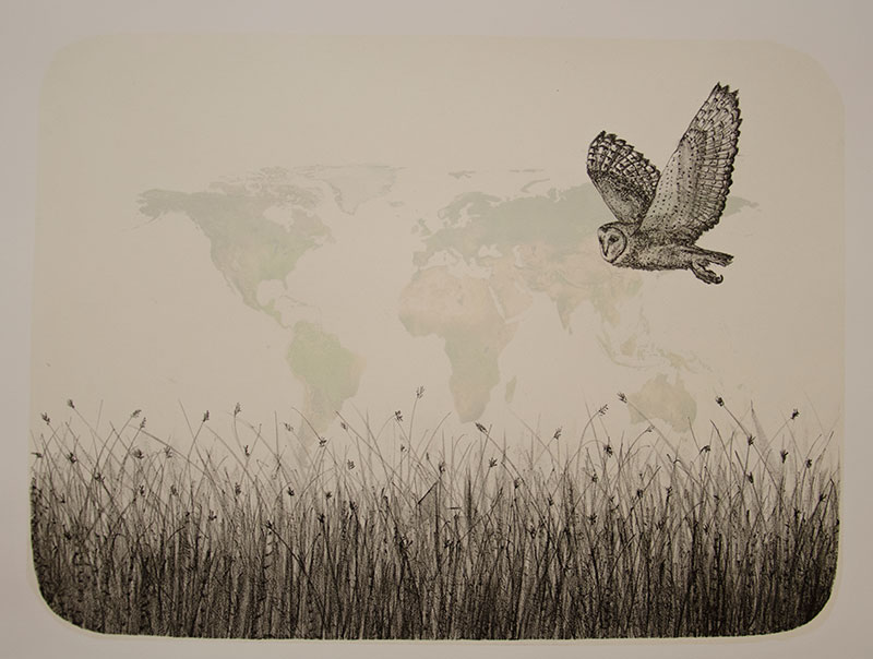 barn-owl-lithograph-flight-map-kmcnickle