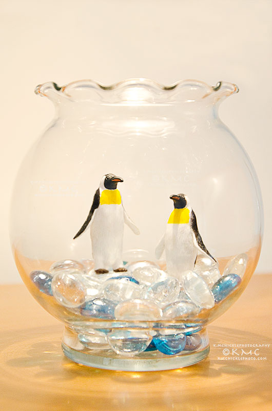 penguin-fishbowl-toy-fineart-kmcnickle